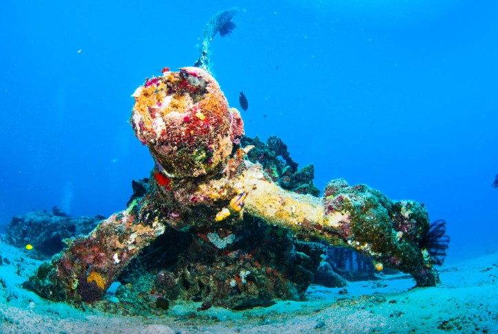 One of the Wasp engines lies on the seabed