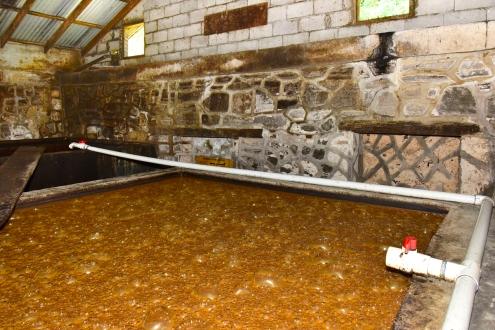 River Antoine Rum Distillery #2