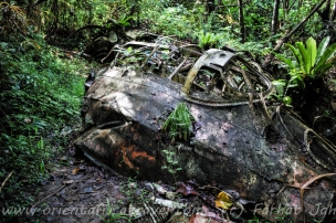 The Japanese betty bomber in Yap's old runway